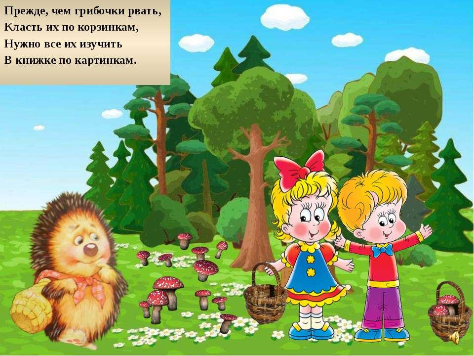 Прежде, чем грибочки рвать, Класть их по корзинкам, Нужно все их изучить В кн...