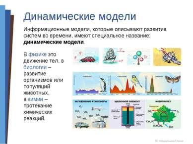Динамические модели Информационные модели, которые описывают развитие систем ...