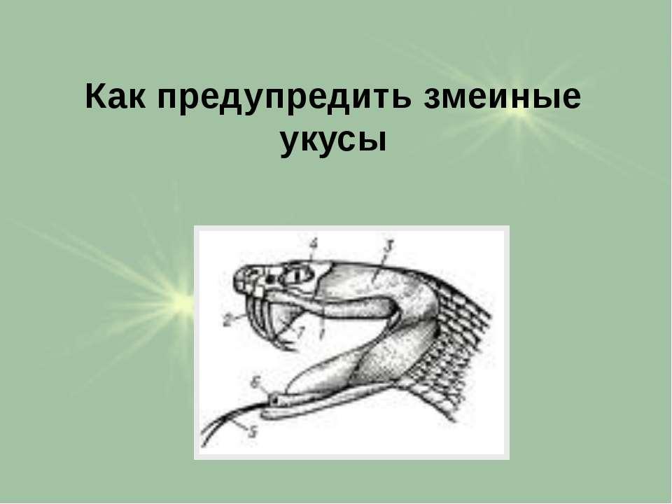 Как предупредить змеиные укусы