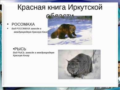 Красная книга Иркутской области РОСОМАХА Вид РОСОМАХА занесён в международную...