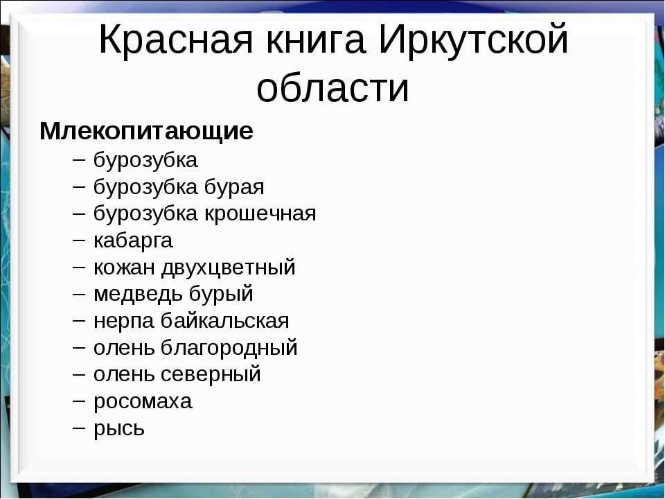 Красная книга Иркутской области Млекопитающие бурозубка бурозубка бурая буроз...