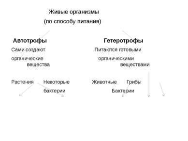 Живые организмы (по способу питания) Автотрофы Гетеротрофы Сами создают Питаю...