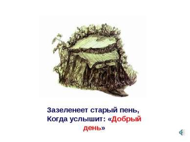 Зазеленеет старый пень, Когда услышит: «Добрый день»