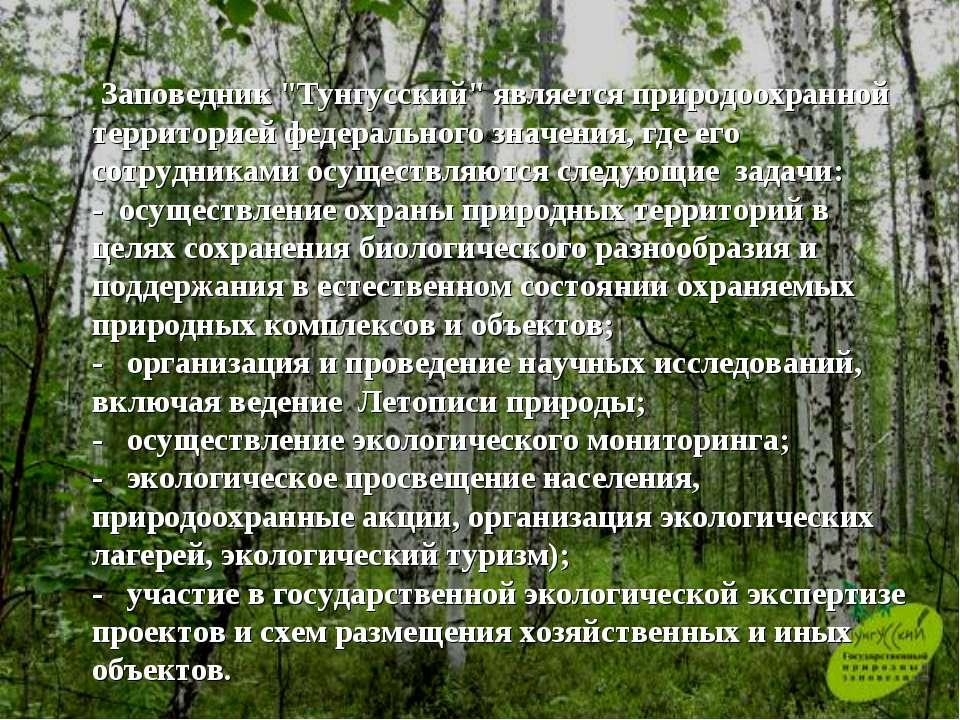 """Заповедник """"Тунгусский"""" является природоохранной территорией федерального зн..."""