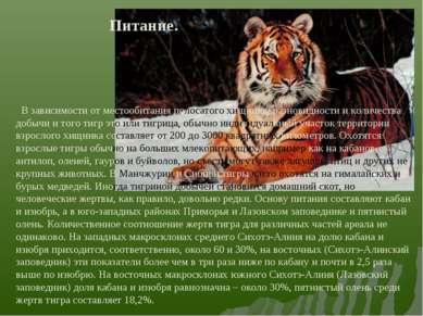 В зависимости от местообитания полосатого хищника, разновидности и количества...