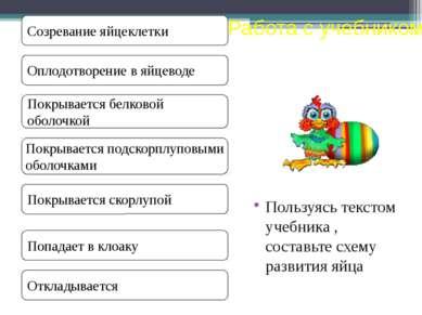 Пользуясь текстом учебника , составьте схему развития яйца Развитие яйца Рабо...