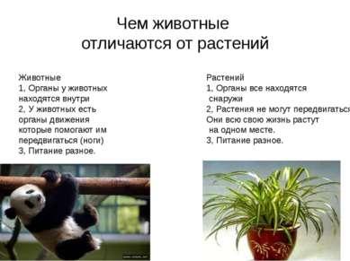Чем животные отличаются от растений Животные 1, Органы у животных находятся в...