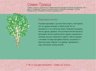 Березовые ветки В центре праздника у русских была береза, они верили, что это...