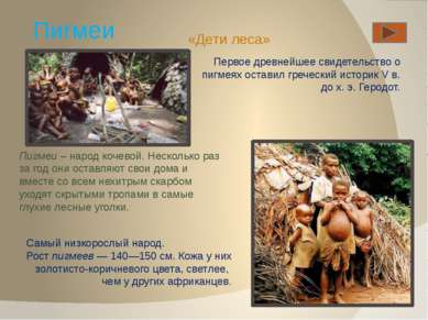 Пигмеи Первое древнейшее свидетельство о пигмеях оставил греческий историк V ...
