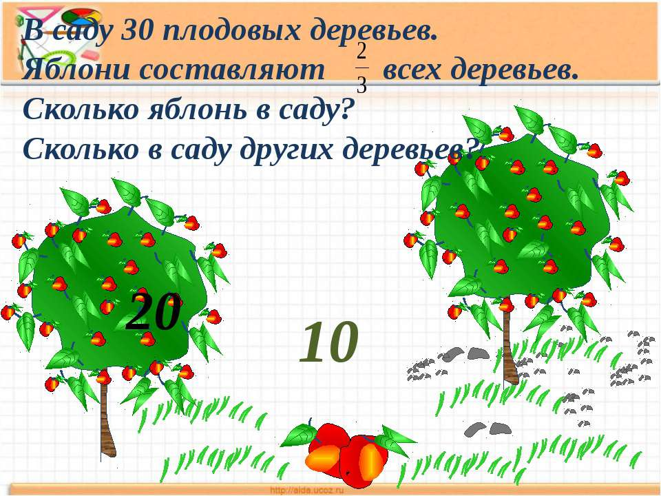В саду 30 плодовых деревьев. Яблони составляют всех деревьев. Сколько яблонь ...