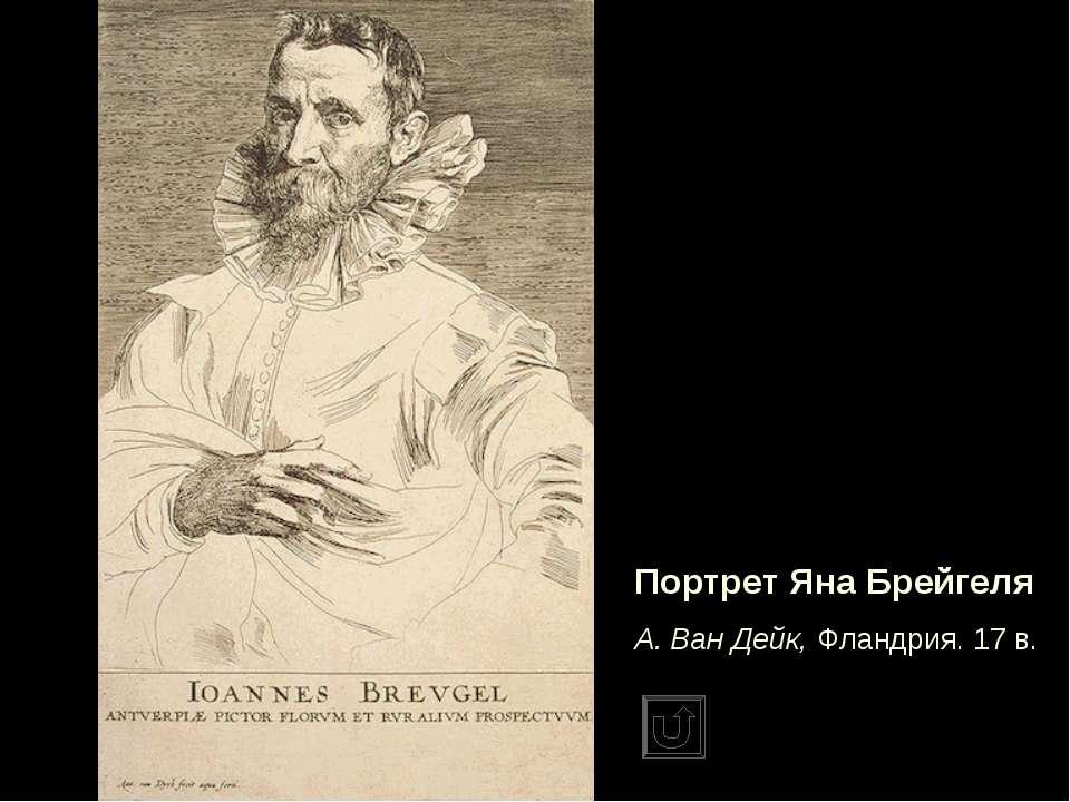 Портрет Яна Брейгеля А. Ван Дейк, Фландрия. 17 в.