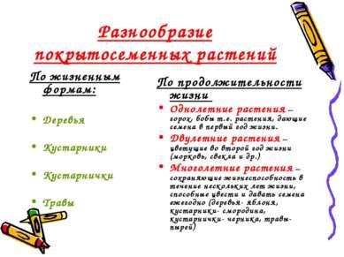 Разнообразие покрытосеменных растений По жизненным формам: Деревья Кустарники...