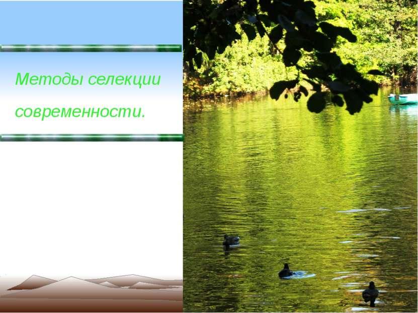 Методы селекции современности.