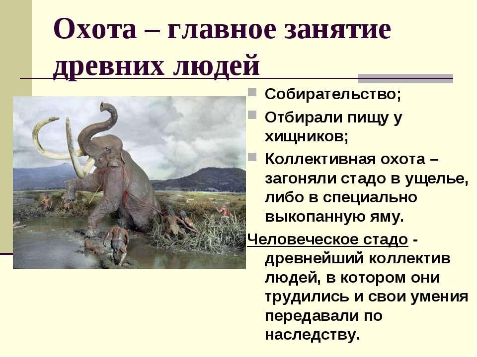 Охота – главное занятие древних людей Собирательство; Отбирали пищу у хищнико...