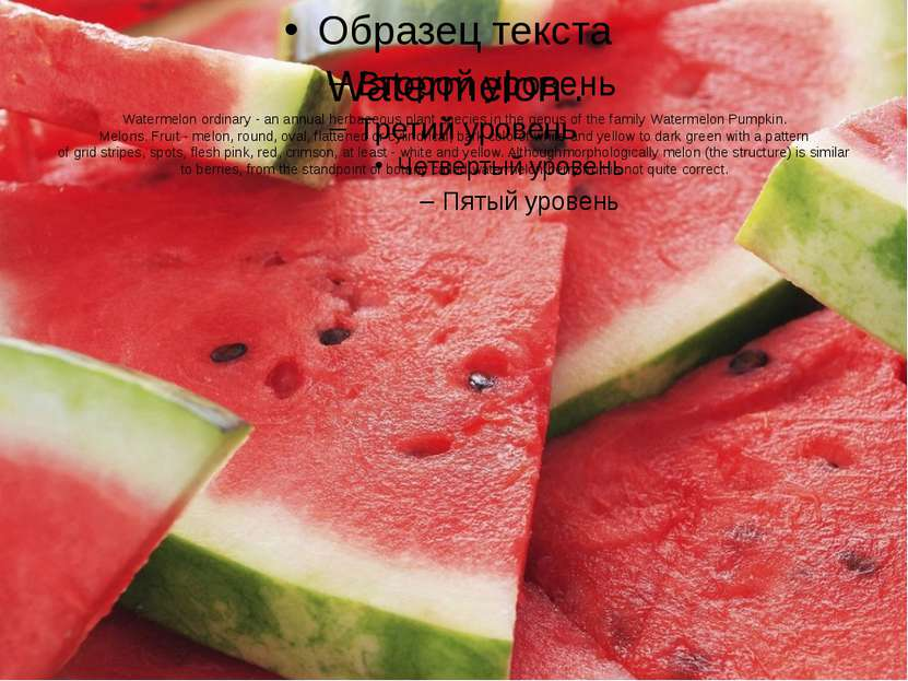 Watermelon . Watermelon ordinary - an annual herbaceous plant species in the ...