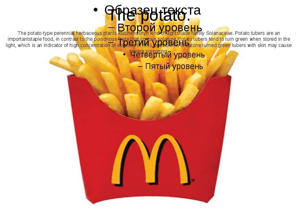 The potato. The potato-typeperennialherbaceous plantsklubnenosnyhkindofN...