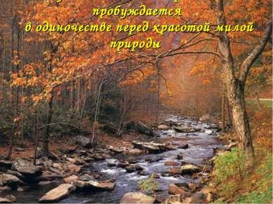 Чувство Родины острее всего пробуждается в одиночестве перед красотой милой п...