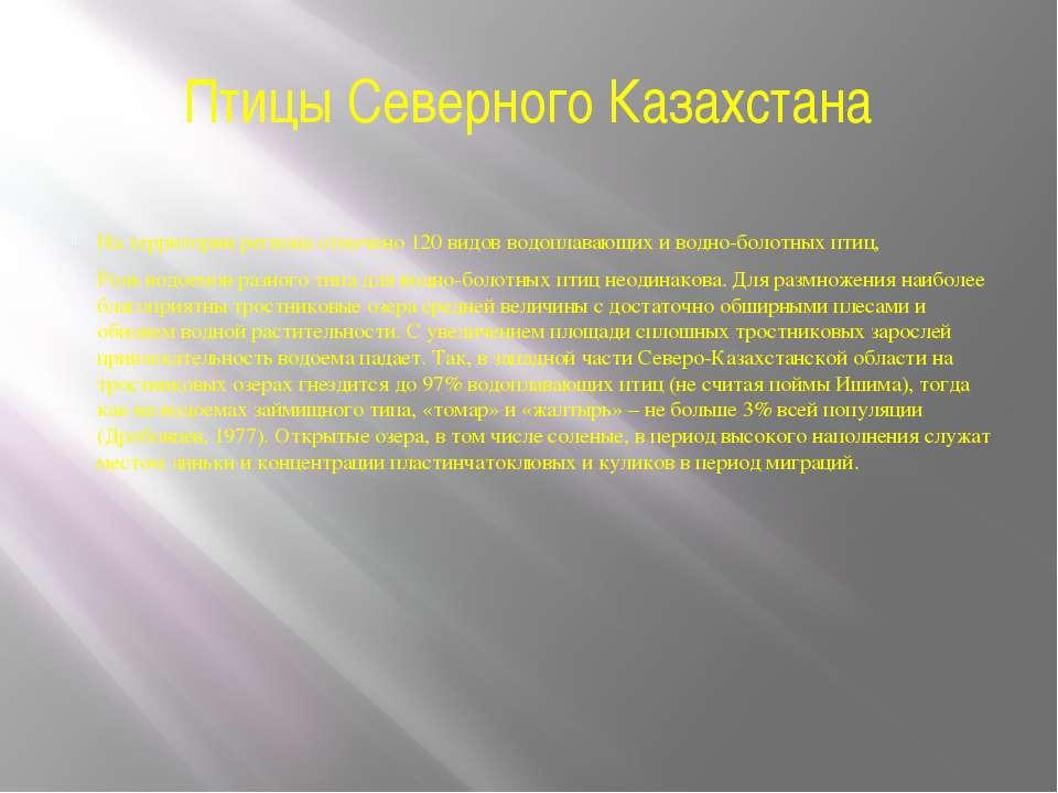 Птицы Северного Казахстана На территории региона отмечено 120 видов водоплава...