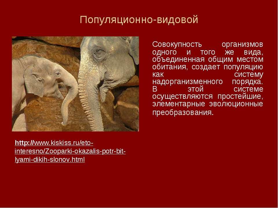 Популяционно-видовой Совокупность организмов одного и того же вида, объединен...