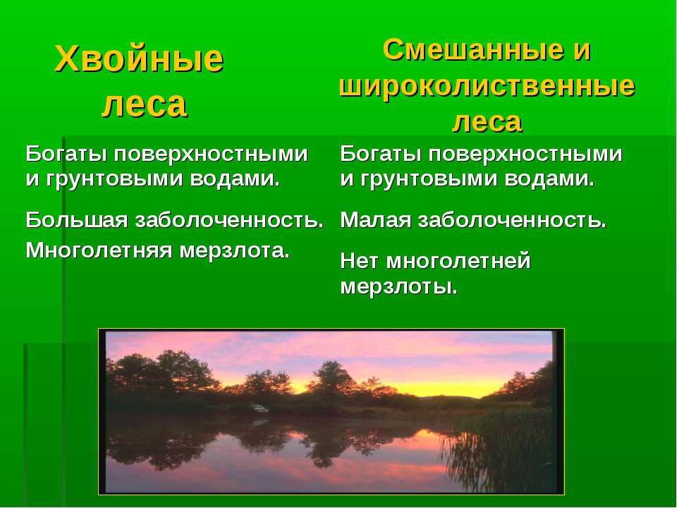 Хвойные леса Смешанные и широколиственные леса Богаты поверхностными и грунто...