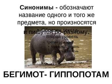 БЕГИМОТ- ГИППОПОТАМ Синонимы - обозначают название одного и того же предмета,...