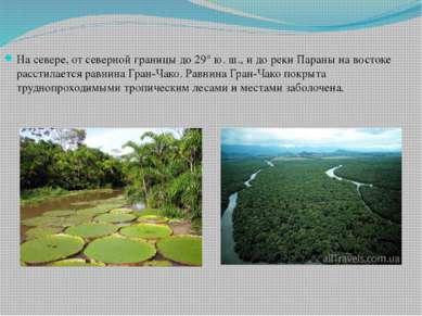 На севере, от северной границы до 29° ю. ш., и до реки Параны на востоке расс...