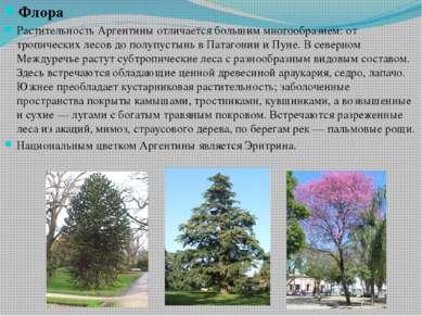 Флора Растительность Аргентины отличается большим многообразием: от тропическ...