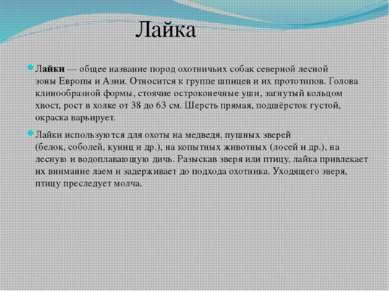 Лайки— общее название пород охотничьихсобаксеверной лесной зоныЕвропыиА...