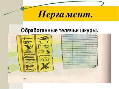 Пергамент. Обработанные телячьи шкуры. Письмо на берестяной коре.