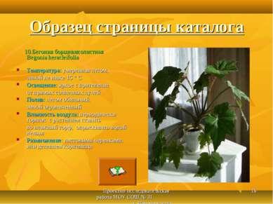 Проектно-исследовательская работа МОУ СОШ № 31 г. Новочеркасска * Образец стр...