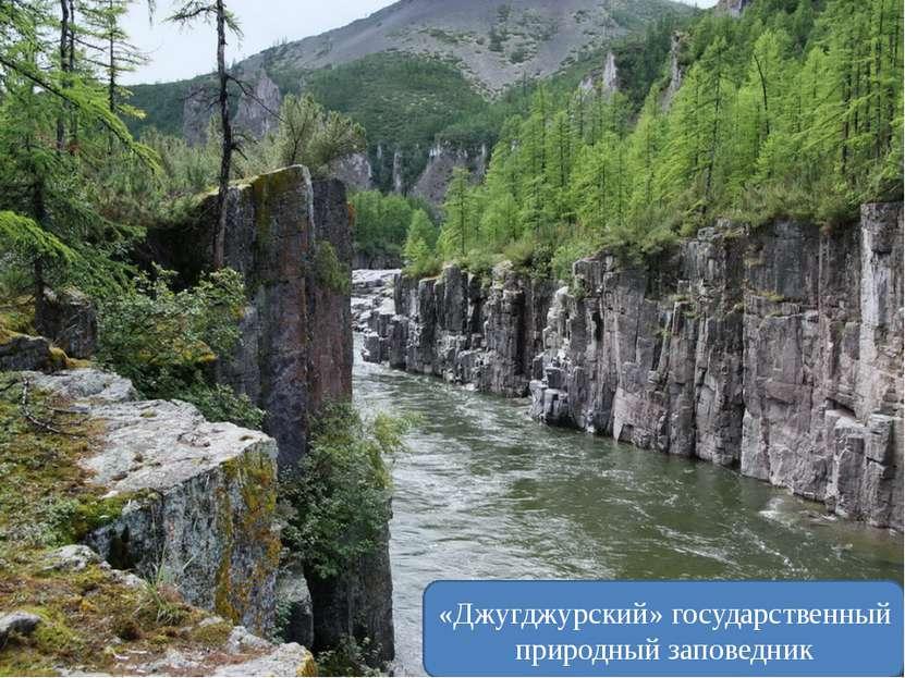 Амурская область «Зейский» государственный природный заповедник Еврейская ав...