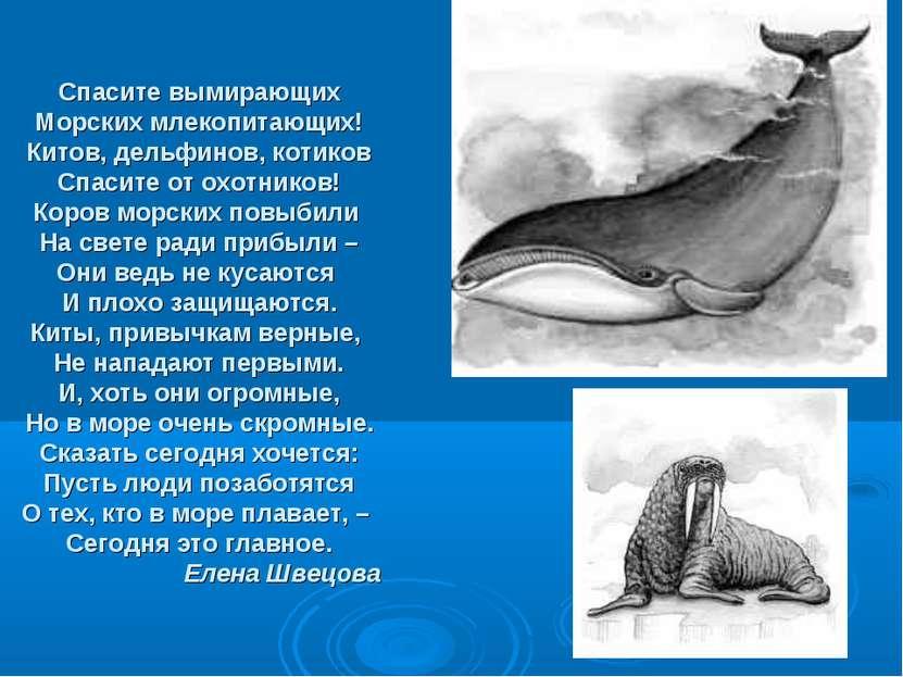 Спасите вымирающих Морских млекопитающих! Китов, дельфинов, котиков Спасите о...