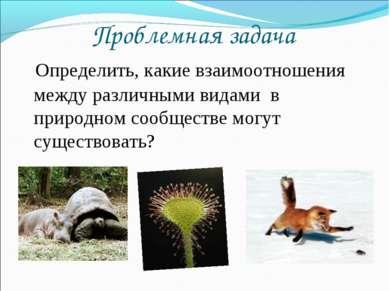 Проблемная задача Определить, какие взаимоотношения между различными видами в...