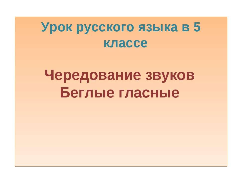 Урок русского языка в 5 классе Чередование звуков Беглые гласные
