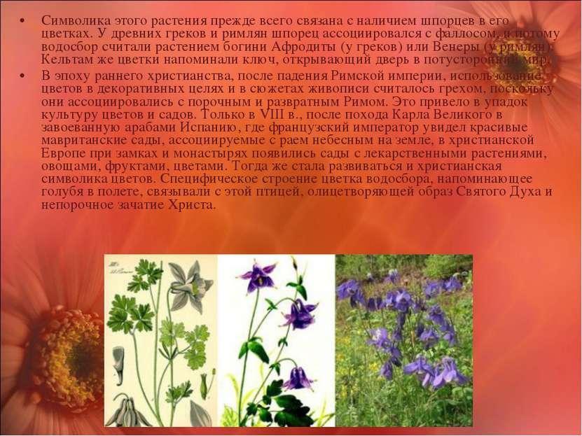 Символика этого растения прежде всего связана с наличием шпорцев в его цветка...