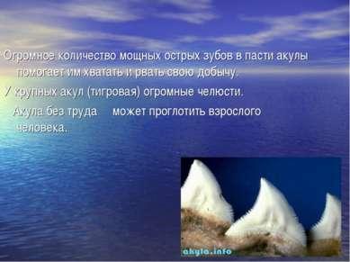 Огромное количество мощных острых зубов в пасти акулы помогает им хватать и р...