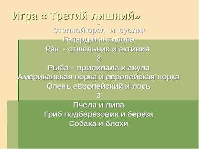 Игра « Третий лишний» 1 Степной орел и суслик Гепард и антилопа Рак - отшельн...