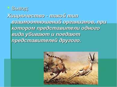 Вывод: Хищничество - такой тип взаимоотношений организмов, при котором предст...