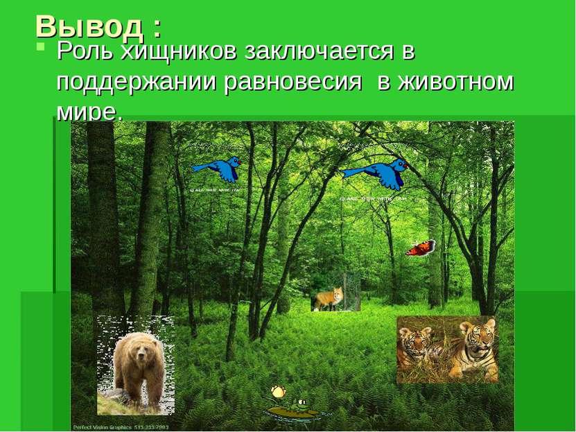 Вывод : Роль хищников заключается в поддержании равновесия в животном мире.