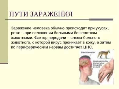 ПУТИ ЗАРАЖЕНИЯ Заражение человека обычно происходит при укусах, реже – при ос...