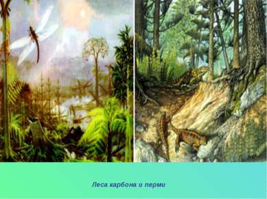 Леса карбона и перми