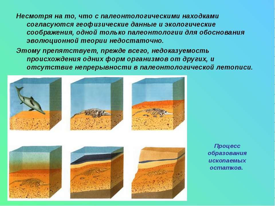 Несмотря на то, что с палеонтологическими находками согласуются геофизические...