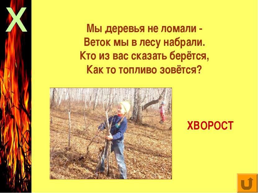 Мы деревья не ломали - Веток мы в лесу набрали. Кто из вас сказать берётся, К...