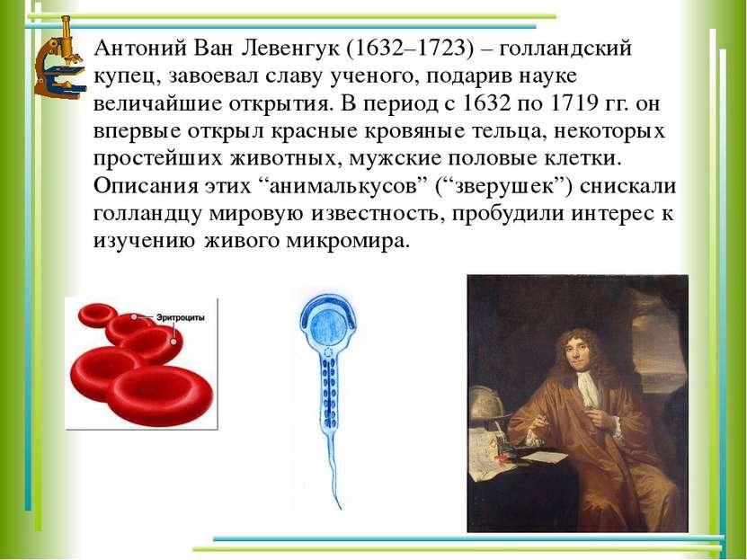 Антоний Ван Левенгук (1632–1723) – голландский купец, завоевал славу ученого,...