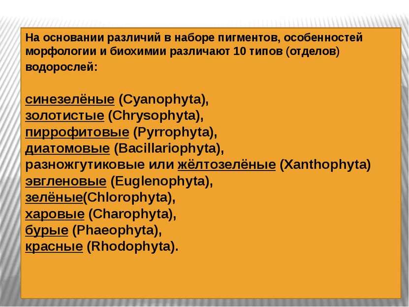 На основании различий в наборе пигментов, особенностей морфологии и биохимии ...