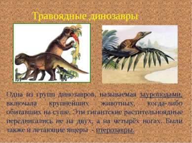 Травоядные динозавры Одна из групп динозавров, называемая зауроподами, включа...