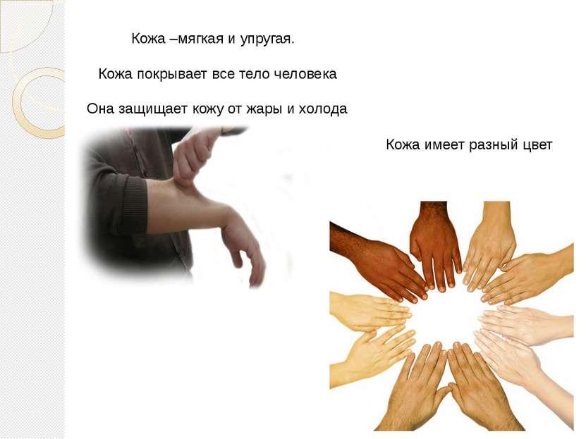 Кожа –мягкая и упругая. Кожа покрывает все тело человека Она защищает кожу от...