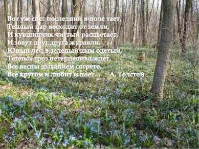 Весна – пора возрождения, любви, надежды. Многие русские классики посвящали с...