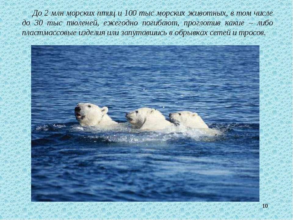 * До 2 млн морских птиц и 100 тыс морских животных, в том числе до 30 тыс тюл...
