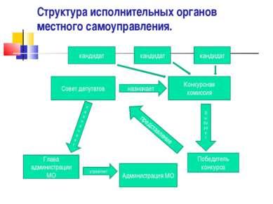 Структура исполнительных органов местного самоуправления. Совет депутатов наз...